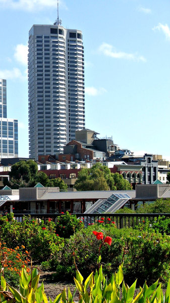 city shapes: contrasting variety of garden and concrete, modern and historic, low and tall buildings