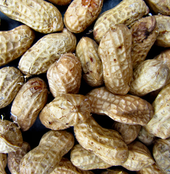 unshelled peanuts2: fresh raw peanuts in their shells