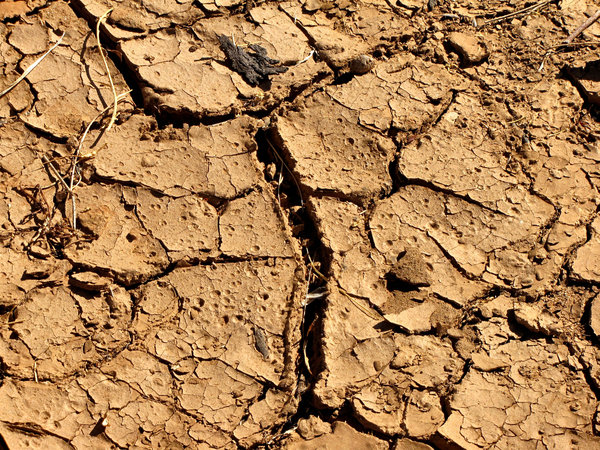 dry and cracked2: dried out waterholes and river's edge