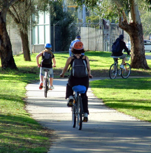 cycle path3: cyclists riding on shaded cycle path