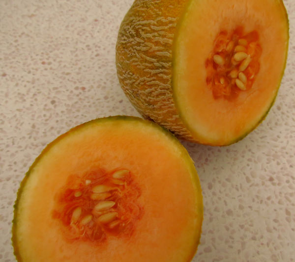 rockmelon ripeness2: the smooth surface and seeds of a cut rock melon