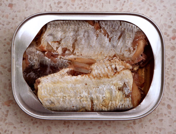 in the can5: tightly packed sardines in tin