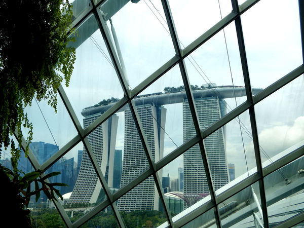 curved ceiling windows8: Singapore's Gardens by the Bay columnless conservatory domes