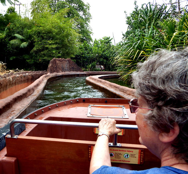 zoo water channel ride: boat ride through rainforest water channel animal displays