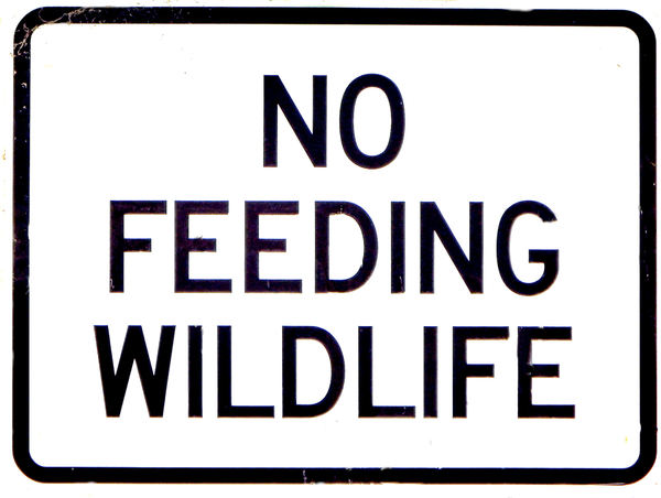 let them feed themselves: wildlife protection warning