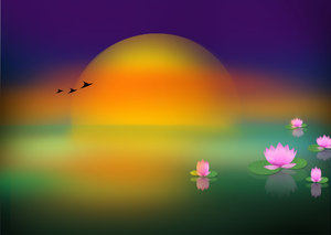 Lotus Lake Illustration: