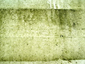texture 2: the last time I shot this I got great comments so I went back to the well for more....enjoy guys.