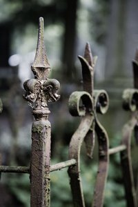 Old Fence: Old Fence on the Maastricht Cemetery