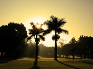 Magic hour: Shot at the Bangalore Golf Club in India.