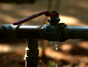 Drip: A leaking pipe at an art institute in Bangalore.