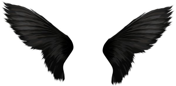 Black Wings: Black Wings