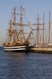 In the navy! 1: Tall Ship's Race, Lisbon, 2006
