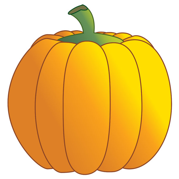 Pumpkin: Pumpkin on a white background.