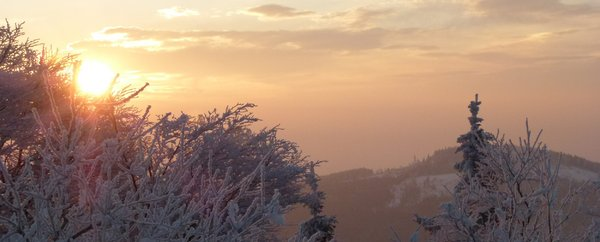 Frosty Morning: Jan 31 2012 8.39: a very frosty morning at 'Großer Feldberg', 888m, near Frankfurt am Main Germany.