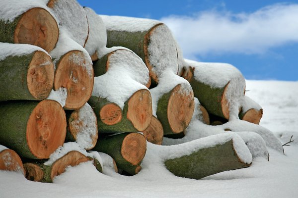 Snow Logs: Log pile after a heavy snowfall