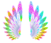 Rainbow Wings: A magical, fantasy pair of wings in rainbow colours on a white background. You may prefer:  http://www.rgbstock.com/photo/mqppEd4/Angel+Light  or:  http://www.rgbstock.com/photo/ms6WZhM/Cutout+Foil+Butterfly