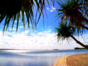 Paradise: Semi-tropical beach on the coast of Queensland, Australia. Framed by pandanus trees and a glorious sky. No redistribution of my images is allowed without permission. Not for sharing or sale on any other site.