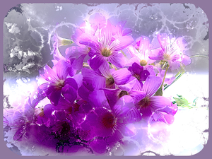Abstract Spring Flowers 1: A bunch of pink flowers with an abstract grunge effect. Would make a pretty card. Please use according to the image licence.