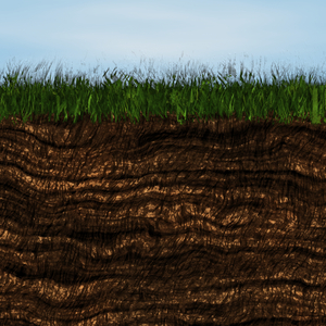 Grass and Soil: A cross section of grass and earth. Great illustration for ecology, health and nature or natural products. Rendered image in very high resolution.