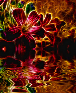 Flower Over Water: A spectacular fiery fractal effect on a flower, reflected in water. (A lot of aliteration, sorry! LOL)