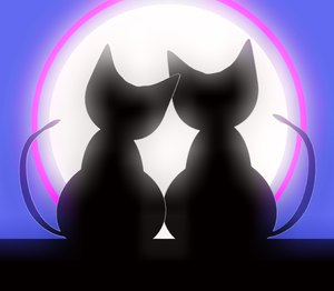 Valentine Cats 4: Two cats in love silhouetted against a big moon. Can illustrate a lot of things, including love, valentine's day, anniversary, honeymoon, etc.