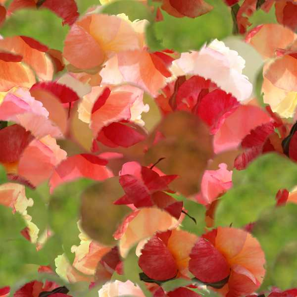 Seamless Floral Tile: A beautiful summery seamless floral tile. You may prefer:  http://www.rgbstock.com/photo/p7rWeVE/Coloured+Floral+Texture+3  or:  http://www.rgbstock.com/photo/p0nozno/Floral+Collage+6