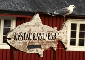 Seagull on Restaurant/Bar sign: Seagull on Restaurant/Bar sign