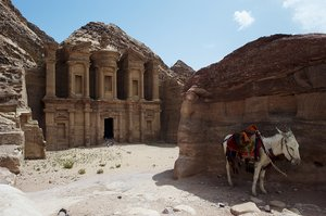 Monastery in Petra: donkey standing in front of The Monastery in famous Jordanian location, Petra