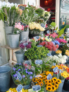Flowers for sale: Flower display in front of a shop