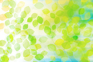 Leaves illustration: Soft illustration of fresh leaves