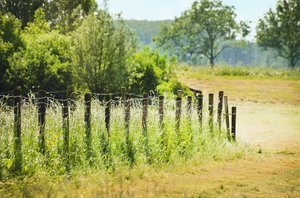 Rural scene: Fence in a meadow